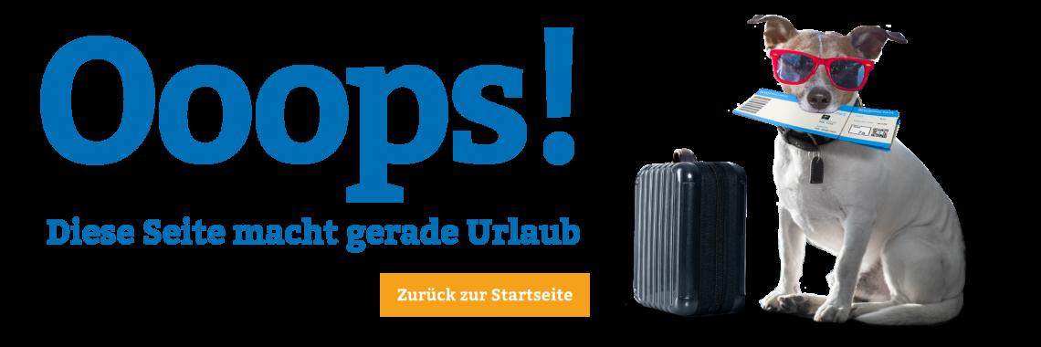 Stanglmeier Website Error-404
